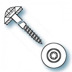 455-045100 Linsensenk-Fassadenschrauben T25_5765